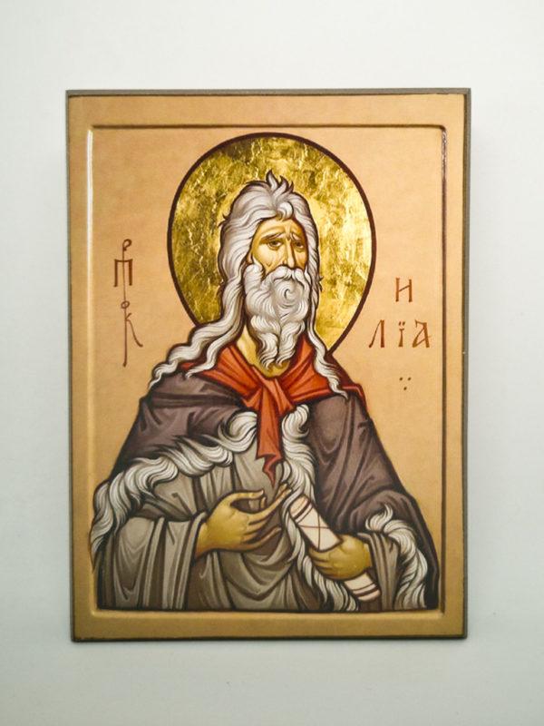Икона Пророк Илья Шешуков
